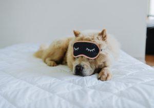 Dormir seul - Mieux dormir lorsqu'il fait chaud : 15 astuces
