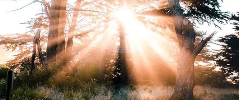 Le Miracle Morning : la méthode miracle pour une meilleure forme ?