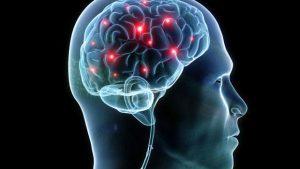 Cerveau sommeil - Ce que fait votre cerveau pendant que vous dormez