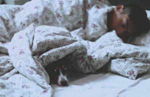 Bien dormir - Comment bien comparer les matelas en ligne ?